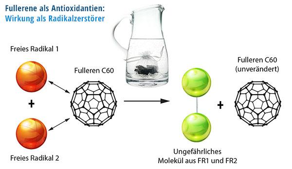 Antioxidative Wirkung von Fullerenen als Radikalzerstörer